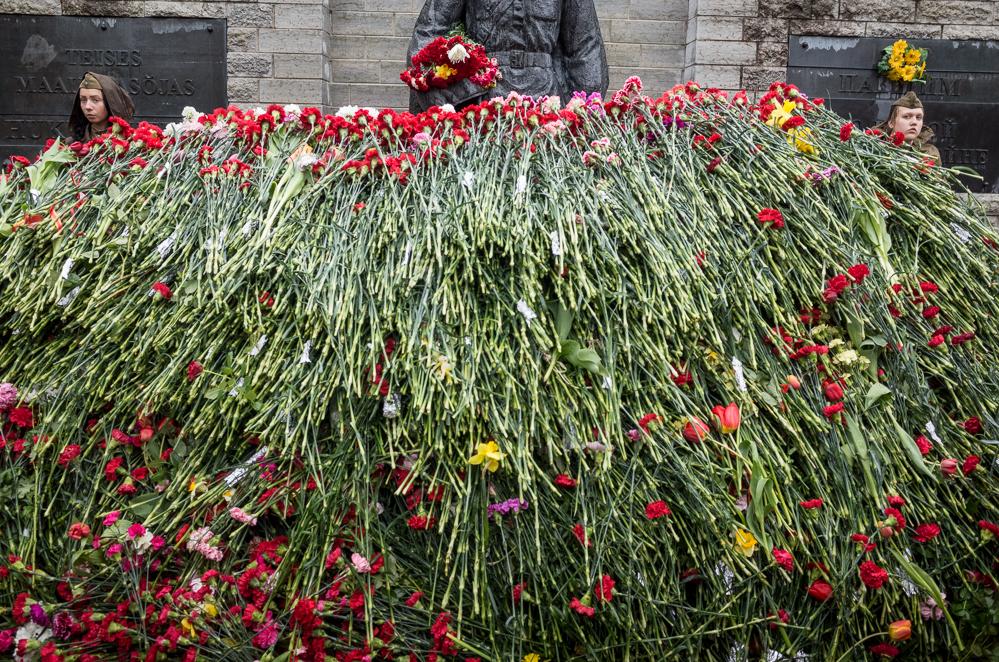 die Blumen am Nachmittag
